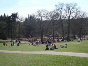 lickey-hills-country-park-see-do-parks-gardens-large
